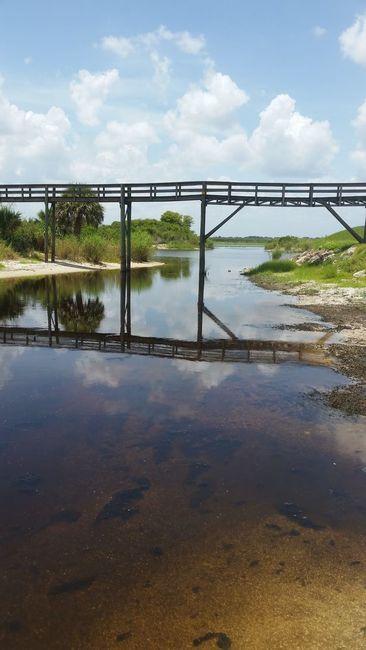 Harney Pond