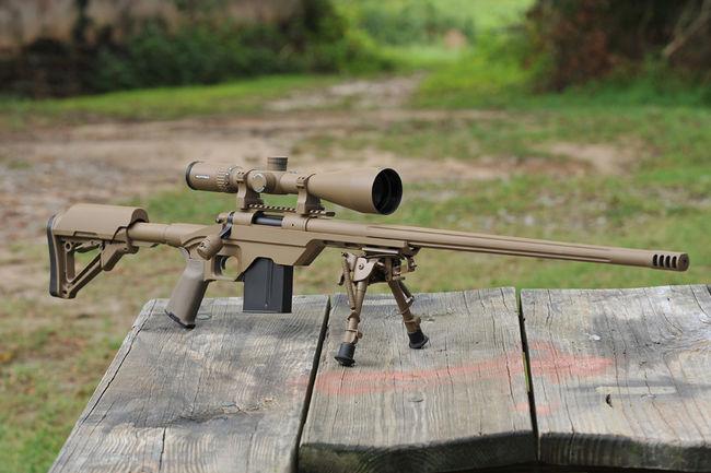 New Deer/Coyote rifle