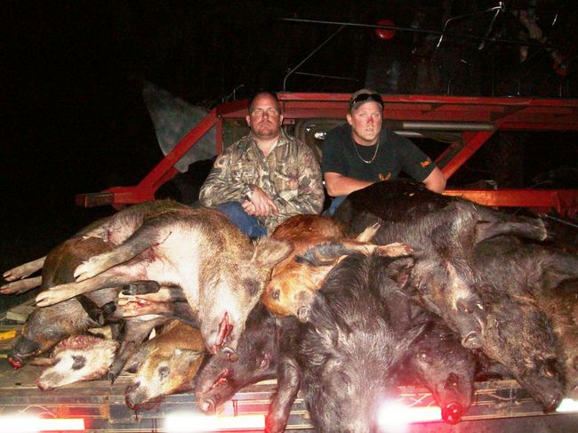 hunting is not bad So, southern illinois is not really a bad place to hunt instead, it's more of a place that is overrated and may not be worth the money for a traveling hunter to visit instead, it's more of a place that is overrated and may not be worth the money for a traveling hunter to visit.