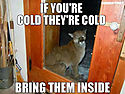 if-youre-cold-theyre-cold.jpg