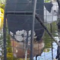 Screenshot_20200621-171718_Snapchat